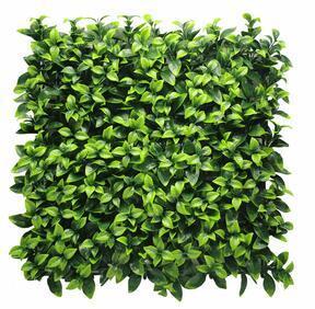 Gardenia künstliche Platte - 50x50 cm