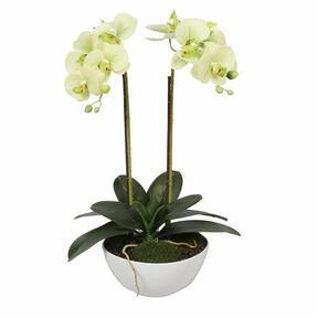 Künstliche Butterorchidee 50 cm