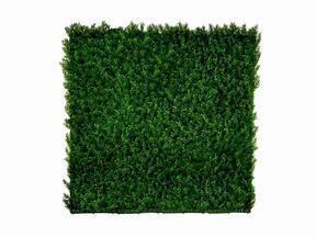Künstliche Nadelholzplatte Cypruštek tujovitý - 50x50 cm