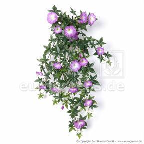 Künstliche Petunienranke lila 75 cm