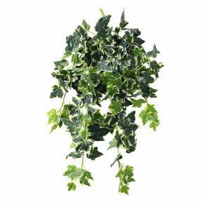 Künstliche Ranke Efeu weiß-grün 80 cm