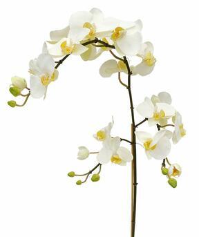 Künstlicher Orchideenzweig weiß 110 cm