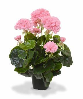Kunstpflanze Pakost rosa 40 cm