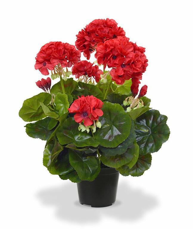 Kunstpflanze Pakost rot 40 cm